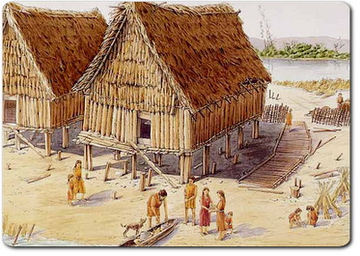 fase neolitico: